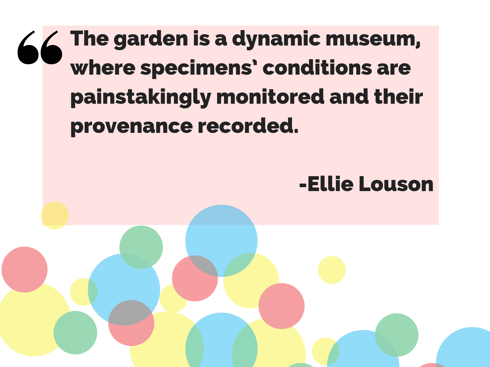 """The garden is a dynamic museum where specimens' conditions are painstakingly monitored and their provenance recorded"" - Ellie Louson"